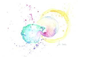 Embryos in color